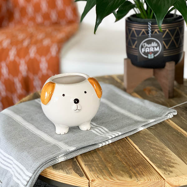 Brown Dog Planter
