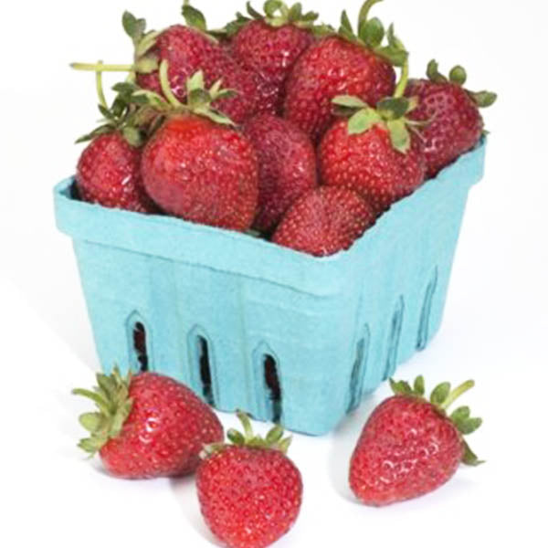 Strawberries: 'Seascape' Everbearing