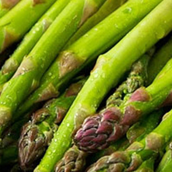 Asparagus: 'Mary Washington'