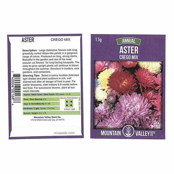 Annual Flower Seeds - Aster 'Crego Mix'