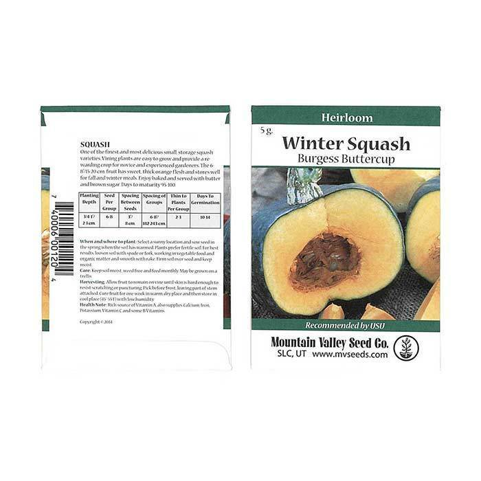Seeds-Winter Squash, 'Burgess Buttercup'
