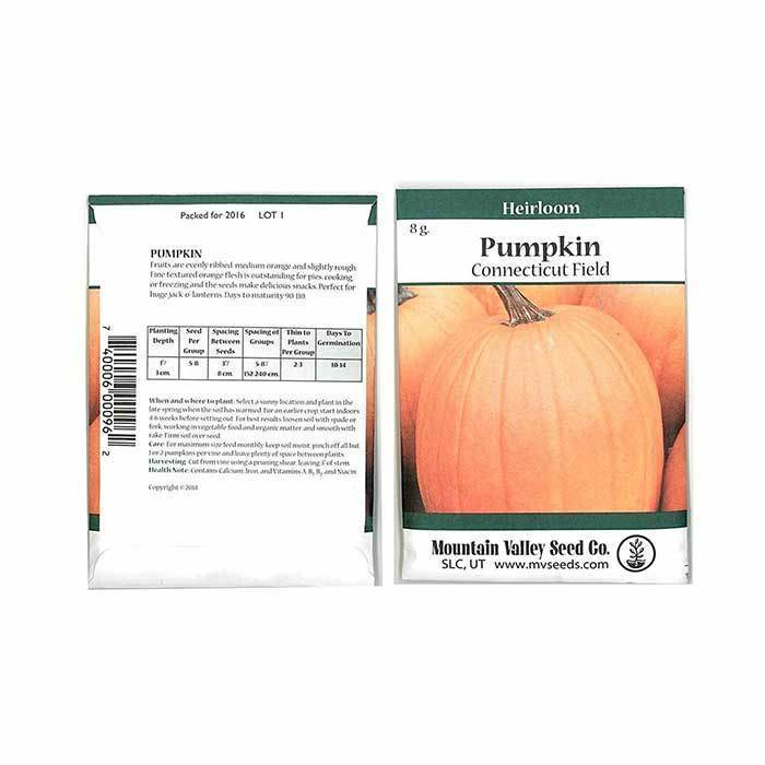 Seeds-Pumpkins, 'Connecticut Field'