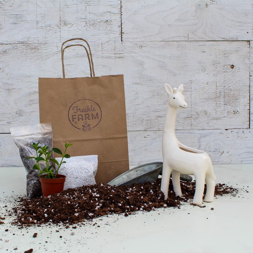 White Giraffe Planter