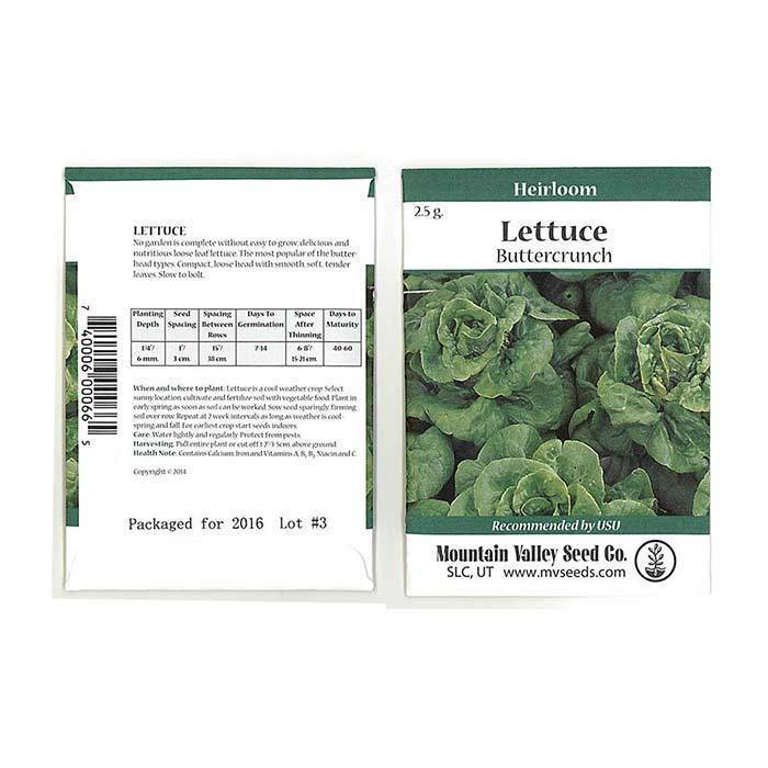 Seeds- Lettuce, 'Buttercrunch'