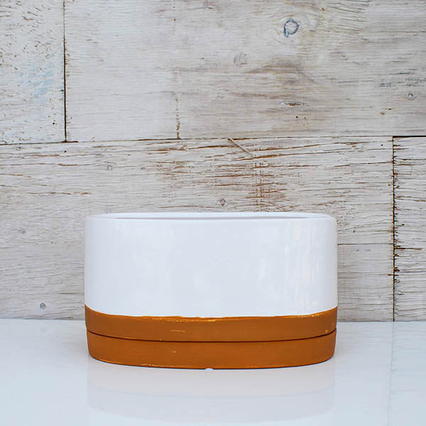 White Oval Planter with Terra Cotta Saucer - 10""