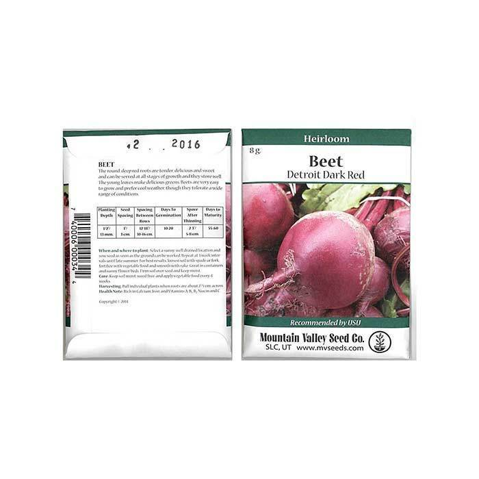 Seeds-Beets, 'Detroit Dark Red'