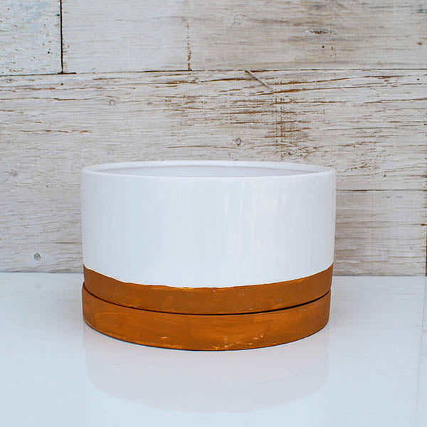 White Round Planter with Terra Cotta Saucer - 9""