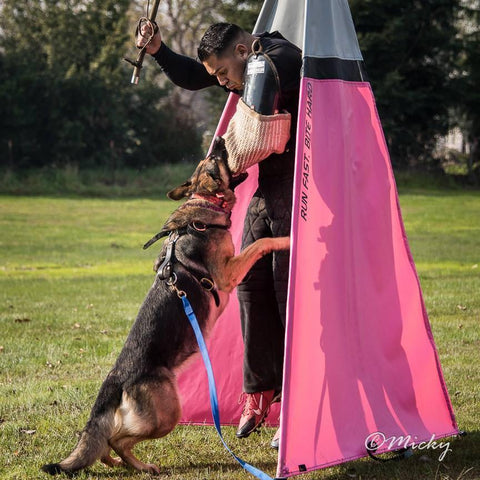 Schutzhund and Training Dog Blinds Set of 6