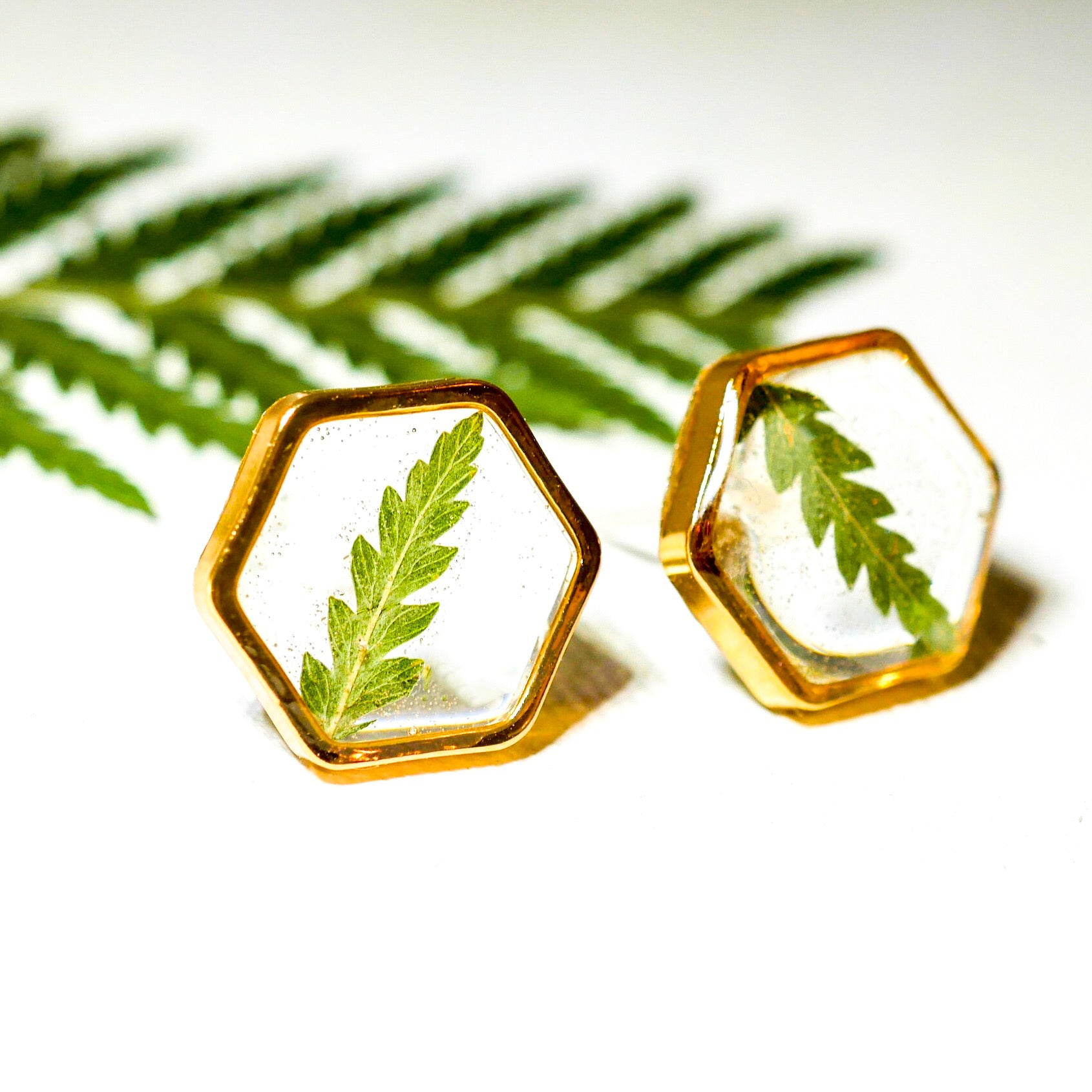 Fern Hexagon earrings studs