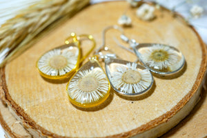 Tiny Real Daisy Teardrop Earrings