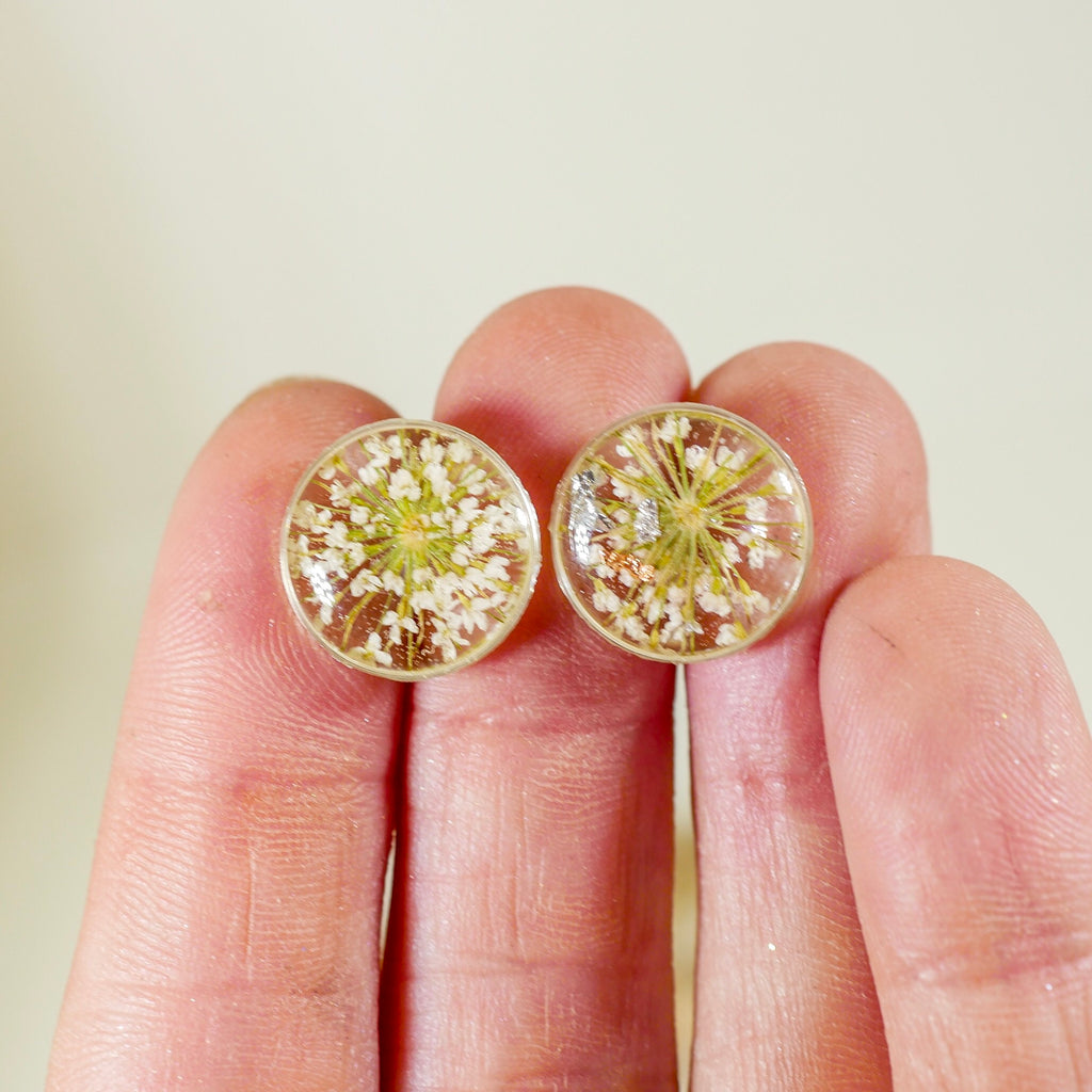 White Queen Anne's Lace flower studs