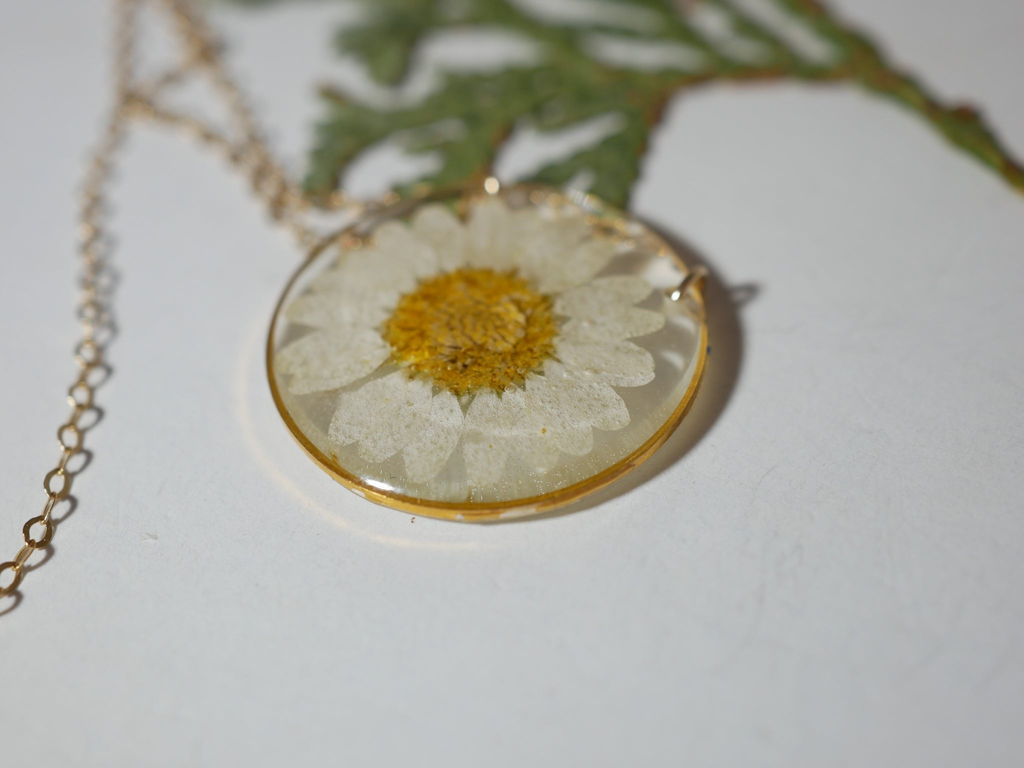 Pressed Daisy Necklace