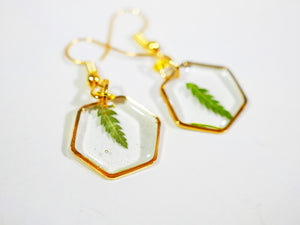 Fern Hexagon earrings