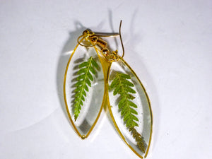 Fern leaf Ellipse earrings