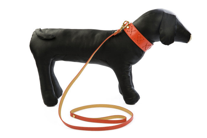 LEATHER DOG COLLARS + LEADS