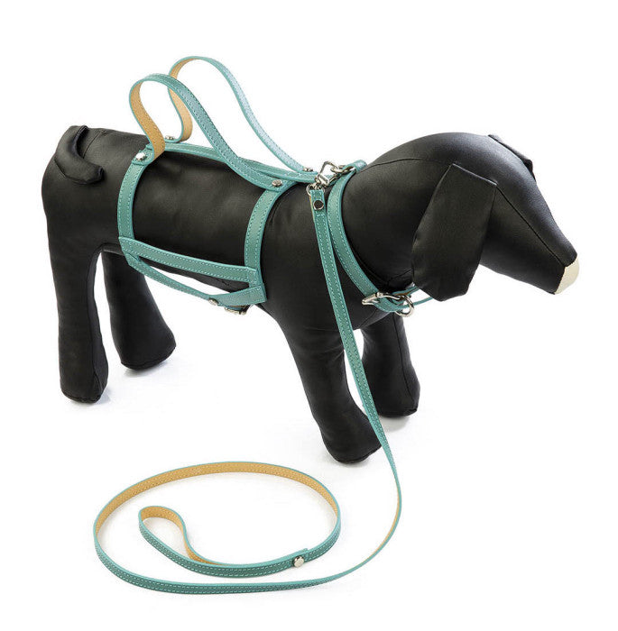 LEATHER DOG HARNESSES + LEADS