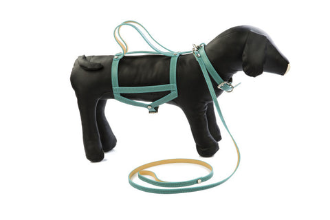 BABA - Leather dog accessories - Leather dog harness + lead HELENE