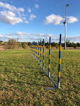 12 Weave Pole Set PRE-ORDER Ships January