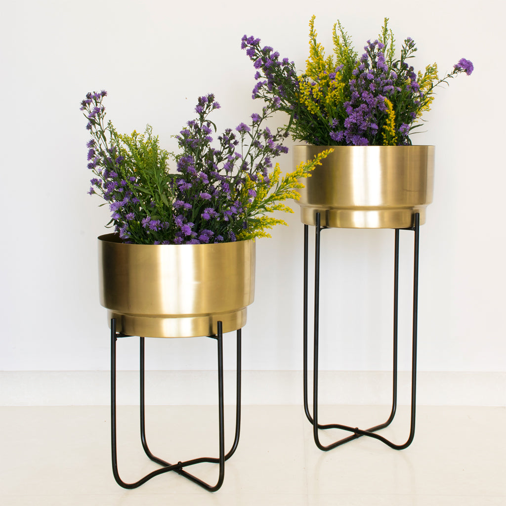 Two Matte gold planters with black stands, Champagne Gold planters