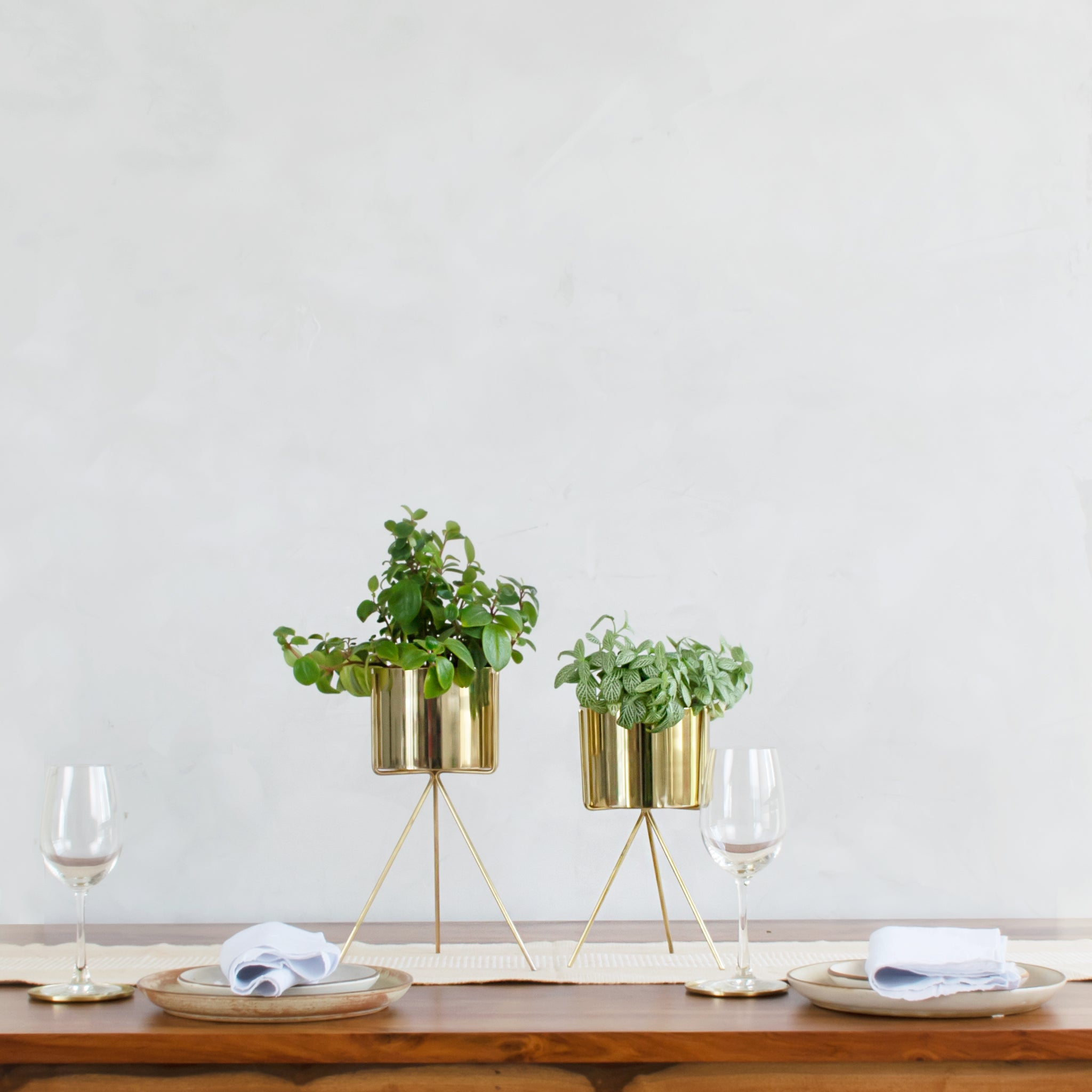 Two gold small table top planters with gold stands on a table with plates and wine glass