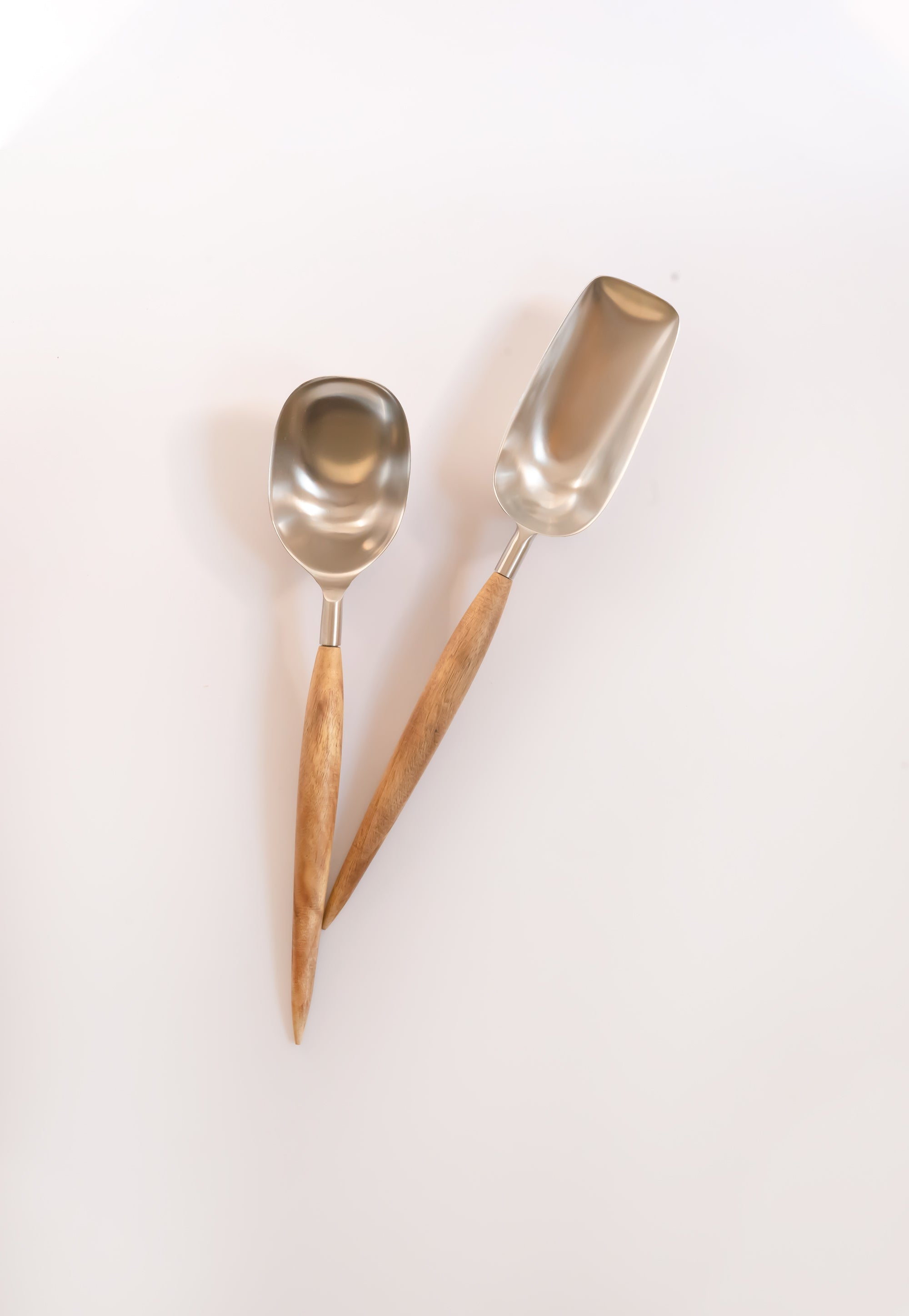 Stainless Steel Scoopers - Fleck