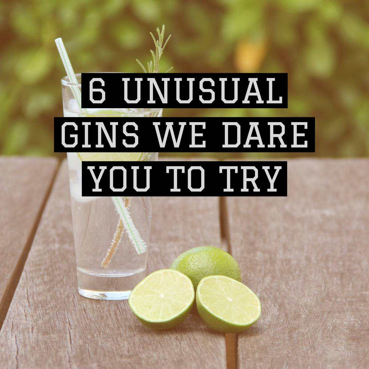 6 unusual gins we dare you to try