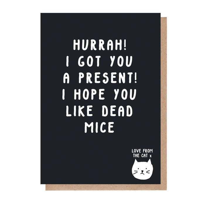 I Hope You Like Dead Mice Card From The Cat