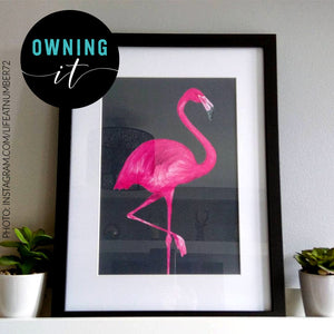 flamingo print framed