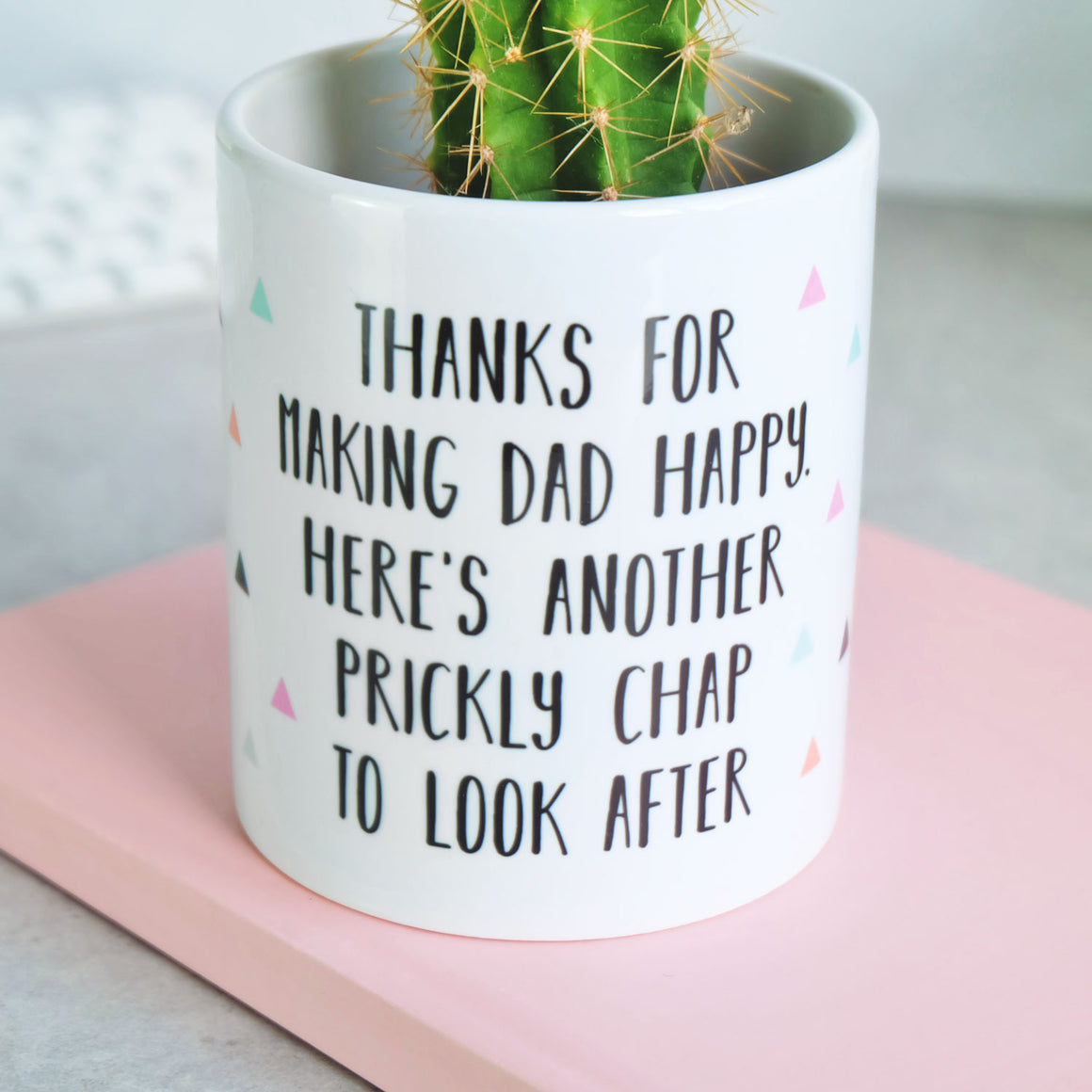 Stepmum Thanks For Making Dad Happy Plant Pot
