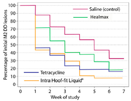 Calgary University Trial finds Hoof-fit more effective than healmax and Tetracycline