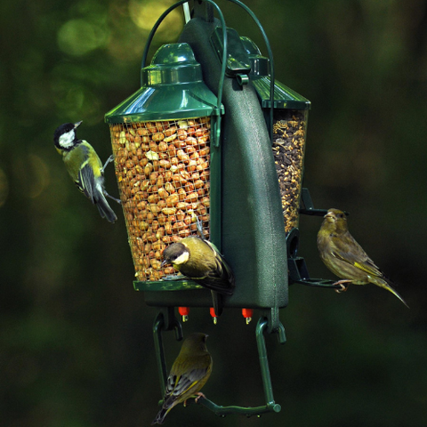 A unique feeding and drinking system to provide birds with clean water, seeds and nuts. Garden birds carry many potentially fatal diseases which are often transmitted by drinking contaminated water. Even if bird baths are disinfected on a daily basis it is inevitable that birds will mess and regurgitate saliva into the water, passing on infection to other birds.
