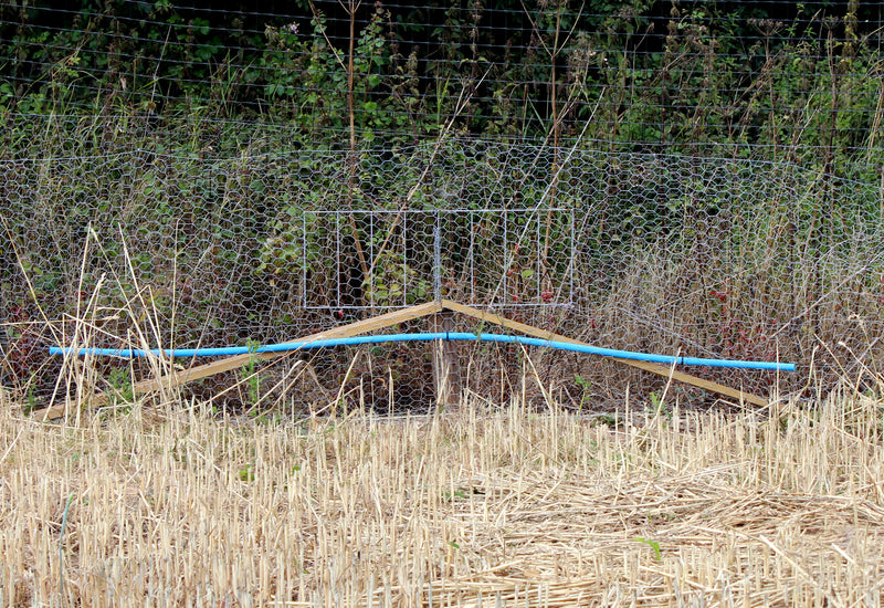 Fox Grid (Pheasant Pop Hole), Fencing, Quill Productions