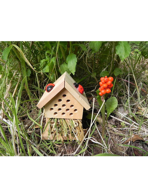 Make your own insect house Tin
