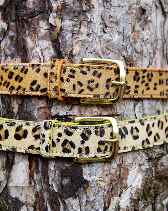Leopard Belt with Neon Edge