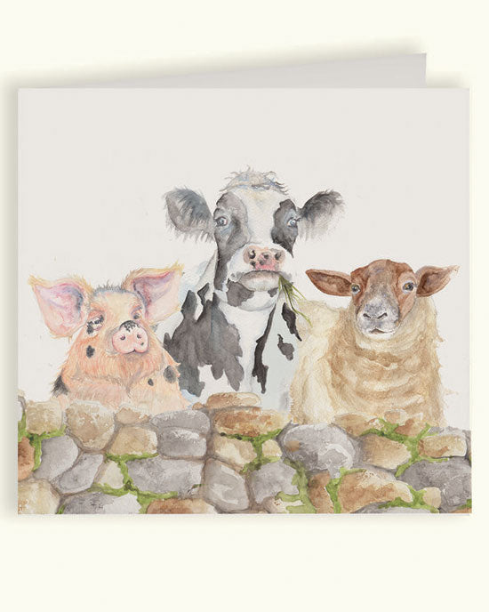 Farmyard Greetings Card - shopatstocks
