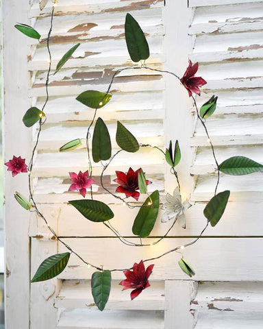 Clematis Fairy Lights