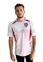 Load image into Gallery viewer, 2002 Korea away replica retro football shirt