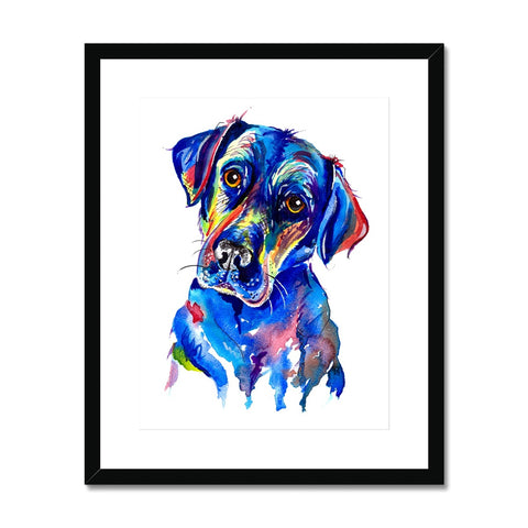 Labrador Framed & Mounted Print