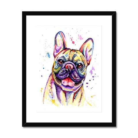 French Bulldog Framed & Mounted Print