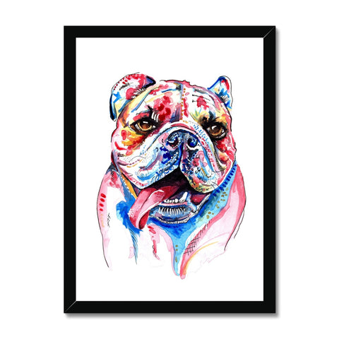 British Bulldog Framed Print - 'Cheeky Boy'