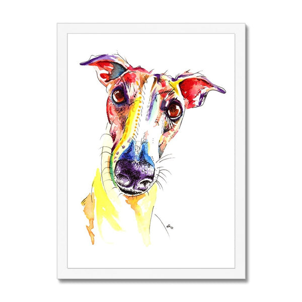 Framed Greyhound Prints white frame