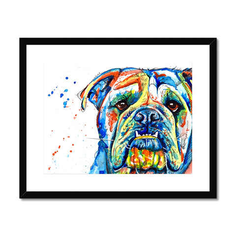 British Bulldog Framed & Mounted Print - 'Handsome Lad'