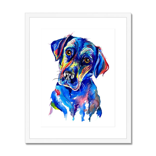 Labrador Framed & Mounted Print - 'Look into my eyes'
