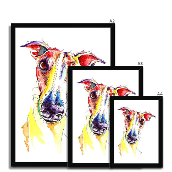 Framed Greyhound Prints - size guide