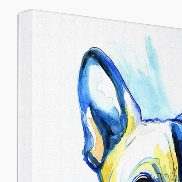 French Bulldog Canvas top view