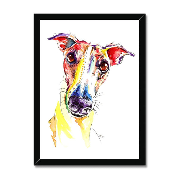 Framed Greyhound Print