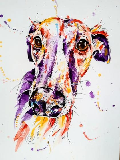 Whippet Dog Portrait