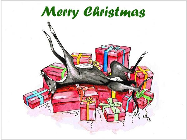 Whippet Xmas Cards