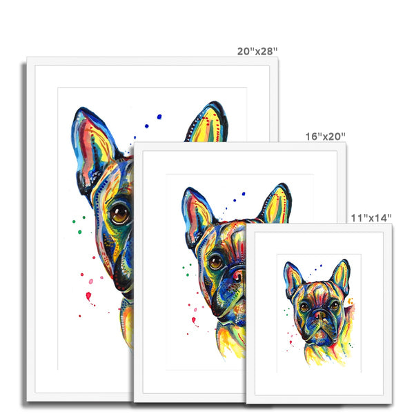 French Bulldog Framed & Mounted Print - 'Too Cool!'