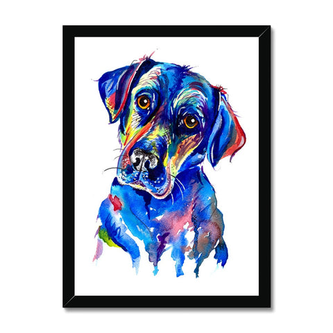 Labrador Framed Print - 'Look into my eyes'